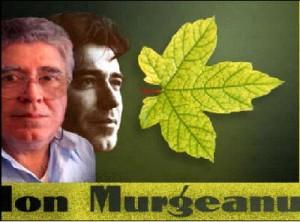 Ion-Murgeanu-Timpul-lasat-in-urma-300x222