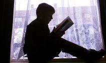 cititor